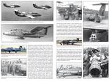 Delfin Aero L-29